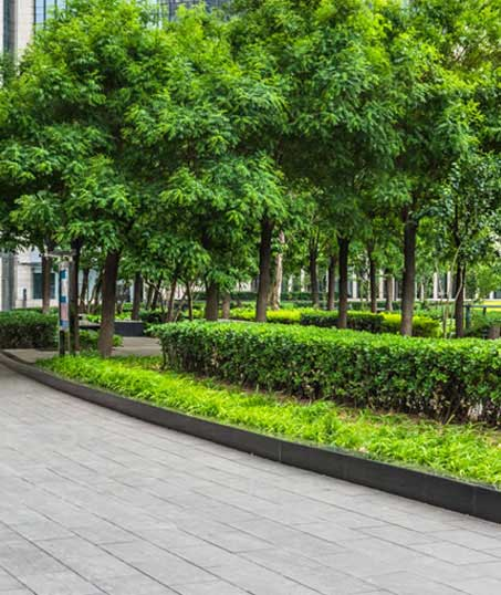 Green Path Landscape Company Commercial Grounds Maintenance